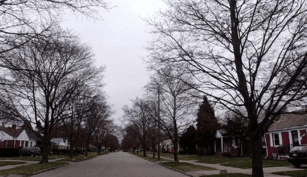 Ward 5 600x347 - Verhuurde woningen in de Verenigde Staten (fase 4)
